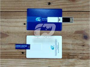 flsah disk id card